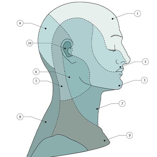 territoires sensitifs face et cou epaule main paris chirurgien nerfs paris maladie atteintes nerfs peripheriques docteur patrick houvet